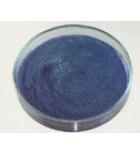 агар сывороточный БФ (0.1 кг)