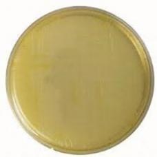 агар цитратный Симонса сухой 0,5 кг
