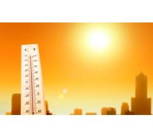2017 год оказался одним из самых жарких в истории наблюдений