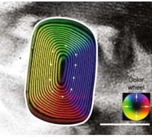 Исследователи обнаружили в метеорите самую древнюю магнитную «запись» в солнечной системе