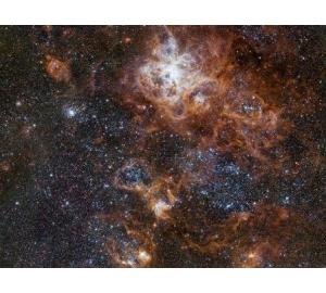 Астрономы получили детальные снимки туманности Тарантул