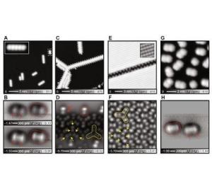 Химики впервые увидели и «пощупали» водородную связь между молекулами